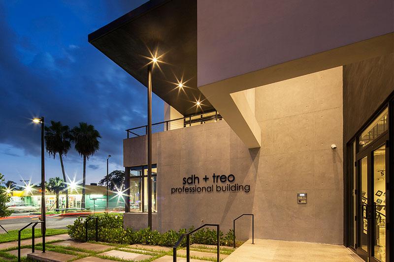 SDH + TREO Professional Building